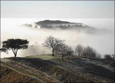 fotografía niebla