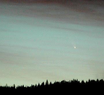 cometa 2006 P1