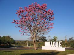 Nioaque - MS