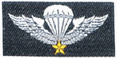 Republic Of Vietnam Airborne Wing