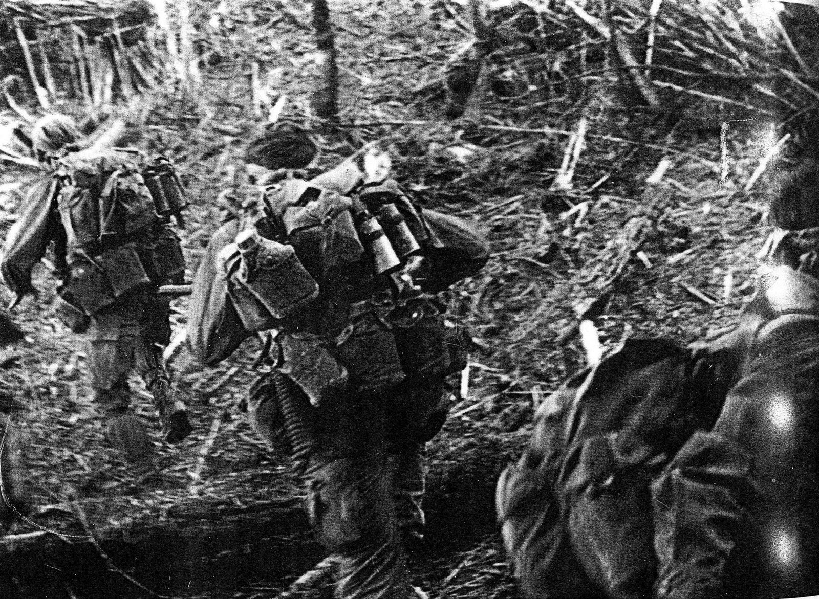 """an analysis of the united states and the republic of vietnam in the vietnam war This essay delves deeply into the origins of the vietnam war, critiques us  ho  named his source and explained its meaning: """"these immortal words are taken  from  government would recognize the vietnamese republic as a free state."""