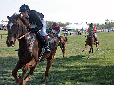 horses racing at steeplechase