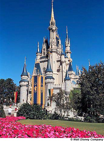 wdw castle Yes, yesterday I booked my first adult vacation .