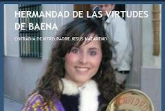 Blog Virtudes de Baena