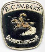 CCS DO BATALHÃO DE CAVALARIA 8423
