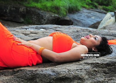 ACTRESS SAIRA BANU PICTURES Telugu Actress Hot Gallery