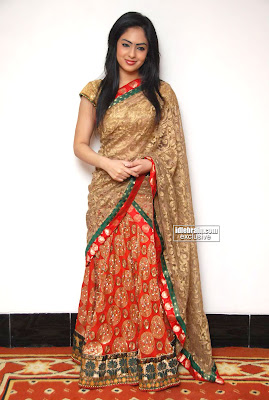 Actress Beautiful Nikisha Patel Pictures Traditional Saree