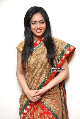 Actress Beautiful Nikisha Patel Pictures Traditional Saree