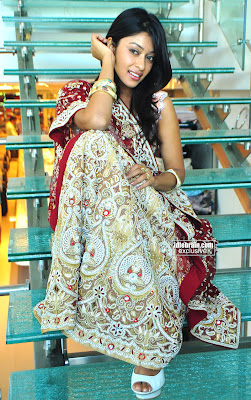 Actress PAYAL GHOSH Photo session In Desi Hot Traditional Saree