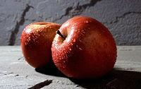 A maçã, um dos símbolos da capa do livro.