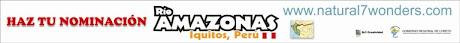 www.votarioamazonas.com