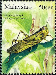 Insects Series 50sen Valanga Grasshopper Stamp