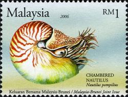 Unique Marine Life RM1 Chambered Nautilus Stamp