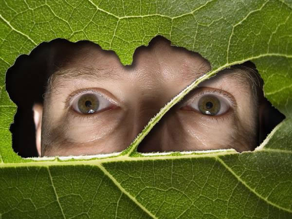 [Human+Nature.jpg]