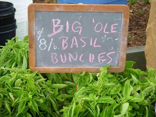 Big 'Ole Basil Bunches