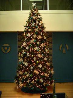 Christmas Tree in Optiem lobby