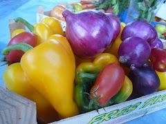 légumes de l'Amap
