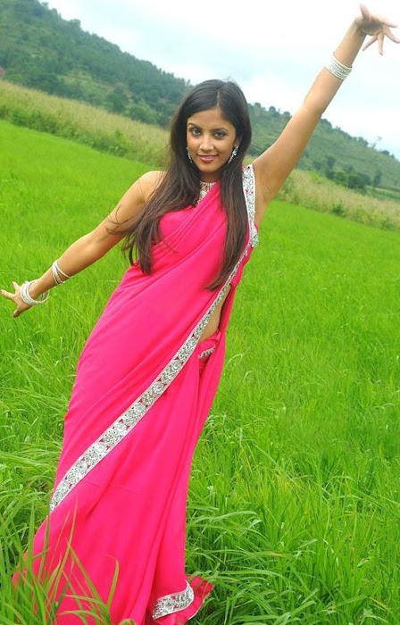 rithika in pink saree photo gallery