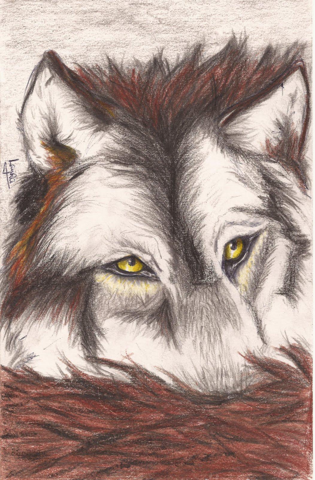 Caricaturas de lobos enamorados - Imagui