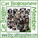 Cat Bloggers Unite!