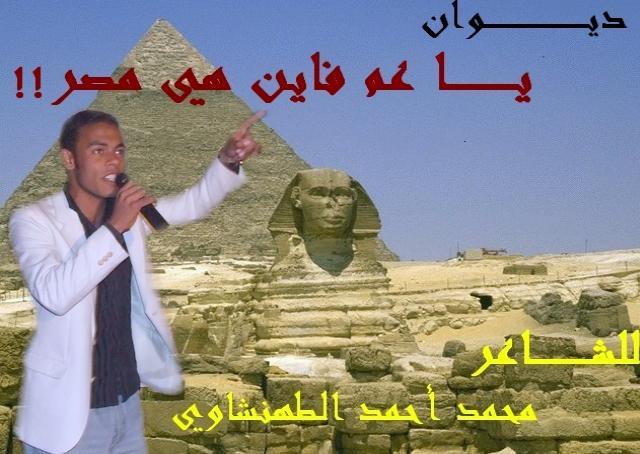 ديــــوان الشاعر العربي/ محمد الطهنشاوي