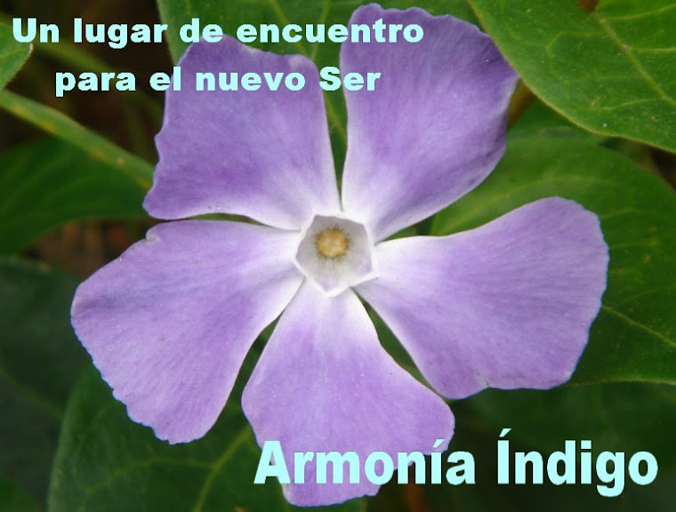 ARMONA NDIGO