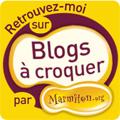 retrouvez moi: -chez marmiton sur blog à croquer
