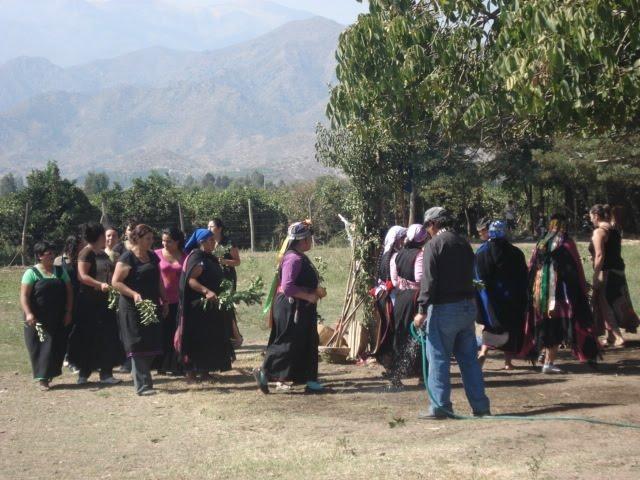 EL WEÑOY TRIPANTÜ 2010 EN EL VALLE DE ACONCAGUA (AKUNKAWA)