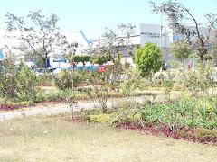 EL area Verde que tiene el Parque la Democracia.