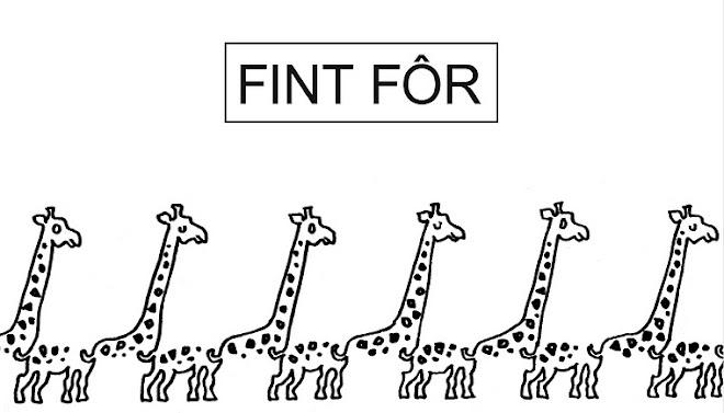 FINT FÔR