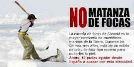 No a la matanza de focas