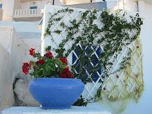 Σε αυλή σπιτιού στην Ανάφη-In the courtyard house in Anafi
