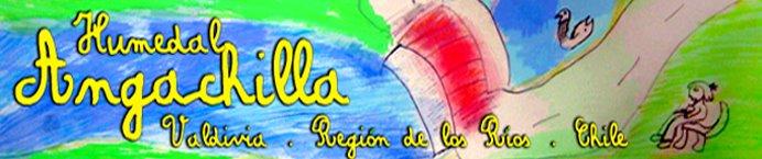 humedal angachilla
