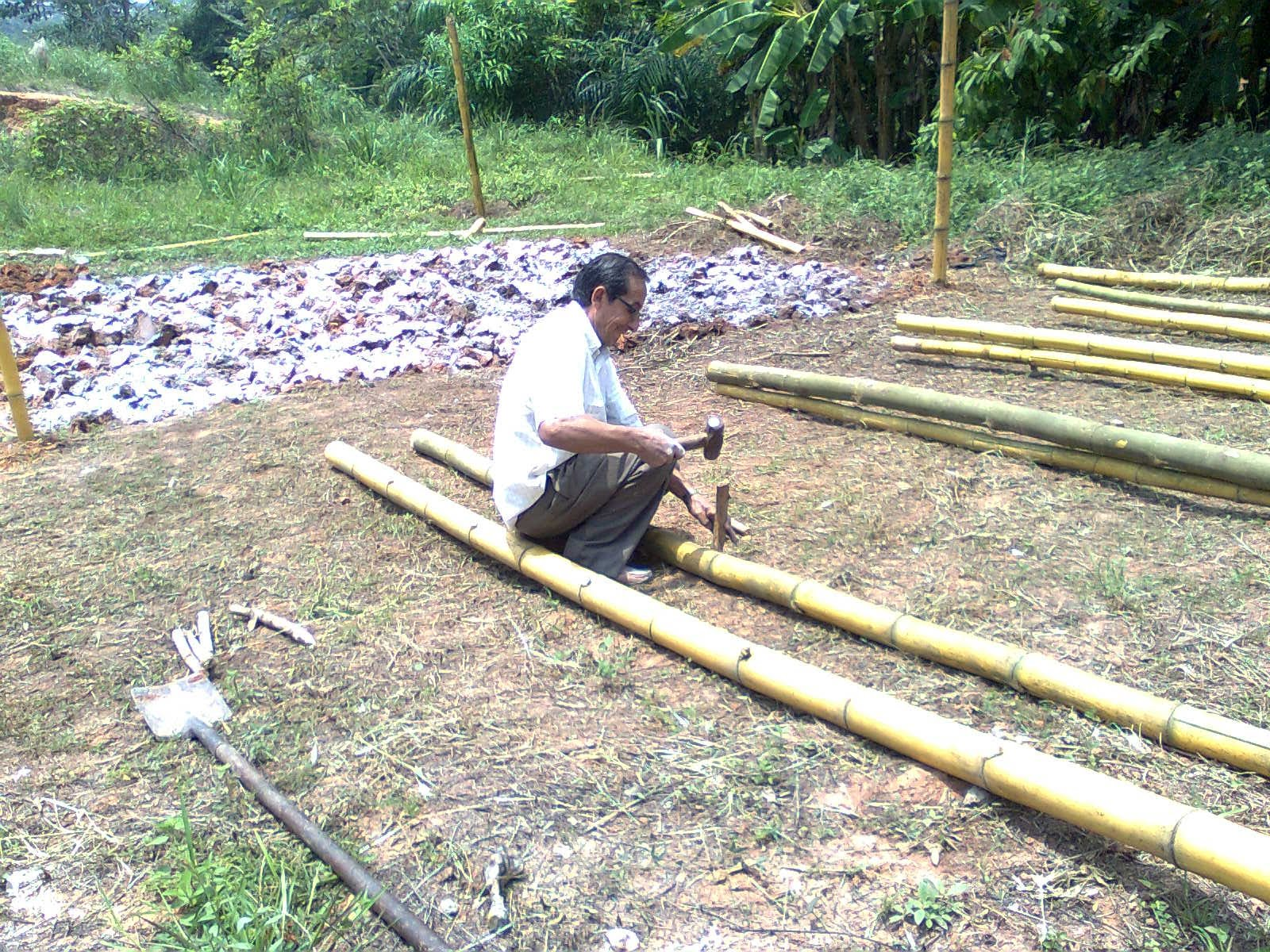 Cafega construccion de vivero de guadua for Construccion de viveros