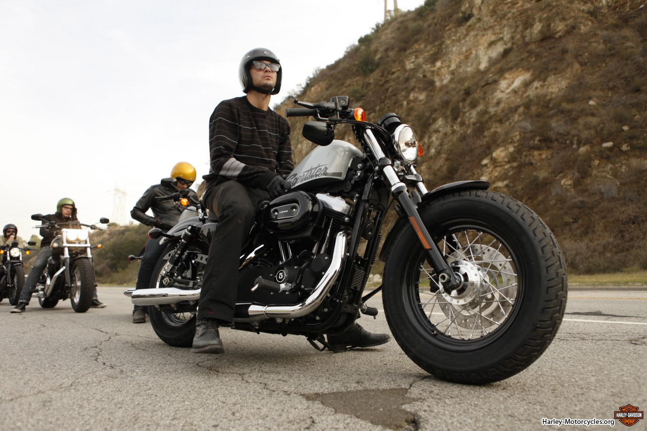 Ajumma's Pad: Heath for Harley-Davidson USA