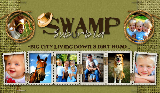 Swamp Suburbia