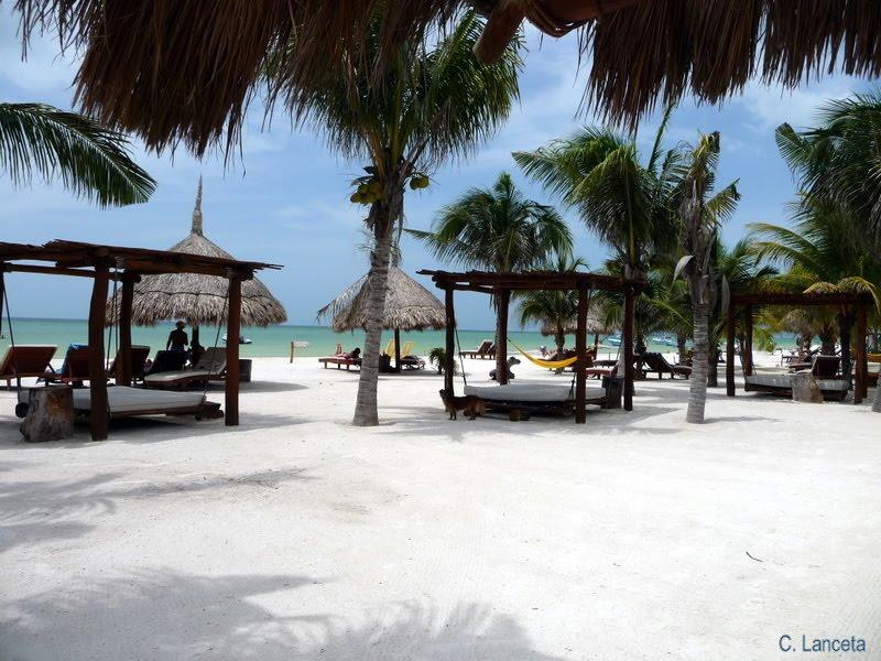 Villas Hm Paraiso Del Mar Reviews