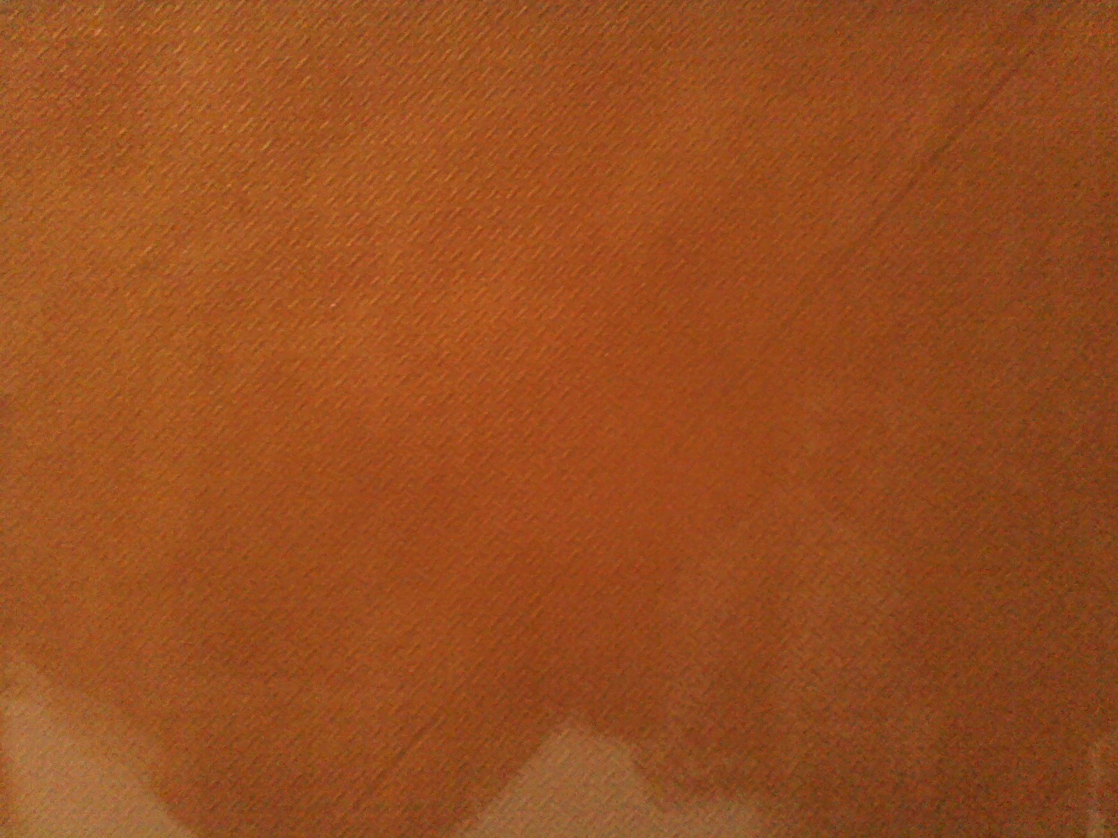 paint a solid coat of yellow ochre. Then a 'wash' of raw sienna ...