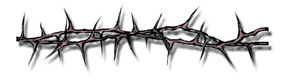 Crown Of Thorns Armband Tattoo Designs