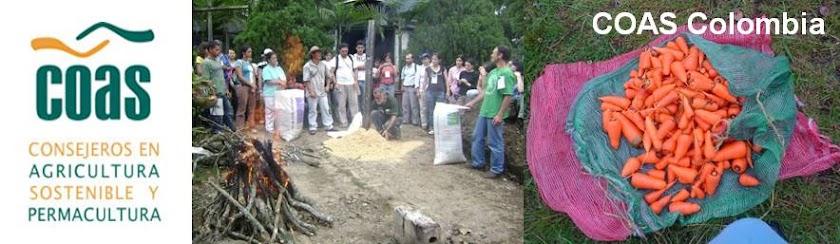 Consejeros en Agricultura Sostenible y Permacultura. COAS Colombia.