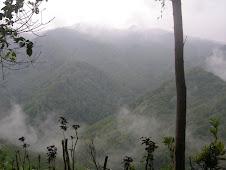 Puncak Gunung berkabut