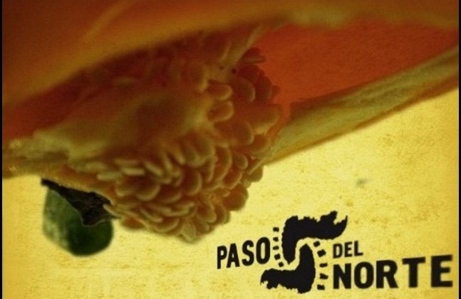 Paso del Norte Restaurante (Muy Pronto!!)