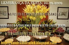 LEMBRANÇA DA FESTA DA SANDRA ANDRADE