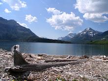 .Western Canada  2007