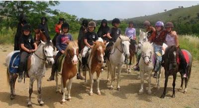poneys 2