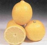 отложение солей лечение лимоном