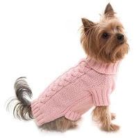 собака в пуловере