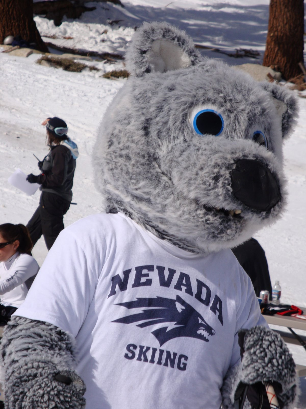 Nevada Alpine Ski team