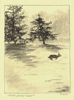 Rabbit Sketch by Lori Levin