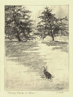 rabbit sketch by Lori Levin